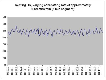Figure 1: Five minutes of resting HR