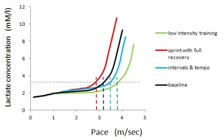 Figure 1: Schematic illustration of changes of the curve representing increase in lactate level from the baseline at the beginning of training block (black-line) produced by three types of training. The horizontal dashed line represent the lactate level tolerable for the duration of a marathon. Vertical lines represent marathon pace after various types of training  Green: low intensity high volume training shifts the curve rightwards, increasing marathon pace. However if there is near full aerobic aerobic development at baseline, the increase will be trivial. Red: sprints with full recovery produce hypertrophy of type 2 fibres, shifting the curve to the left thereby decreasing marathon pace though middle distance performance might be increased. Blue: intervals and tempo sessions lead to hypertrophy of type 2 fibres, increasing lactate at mid-aerobic paces, and also increase aerobic capacity, producing modest increase in marathon pace.