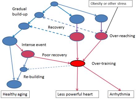 CardiacOutcomes